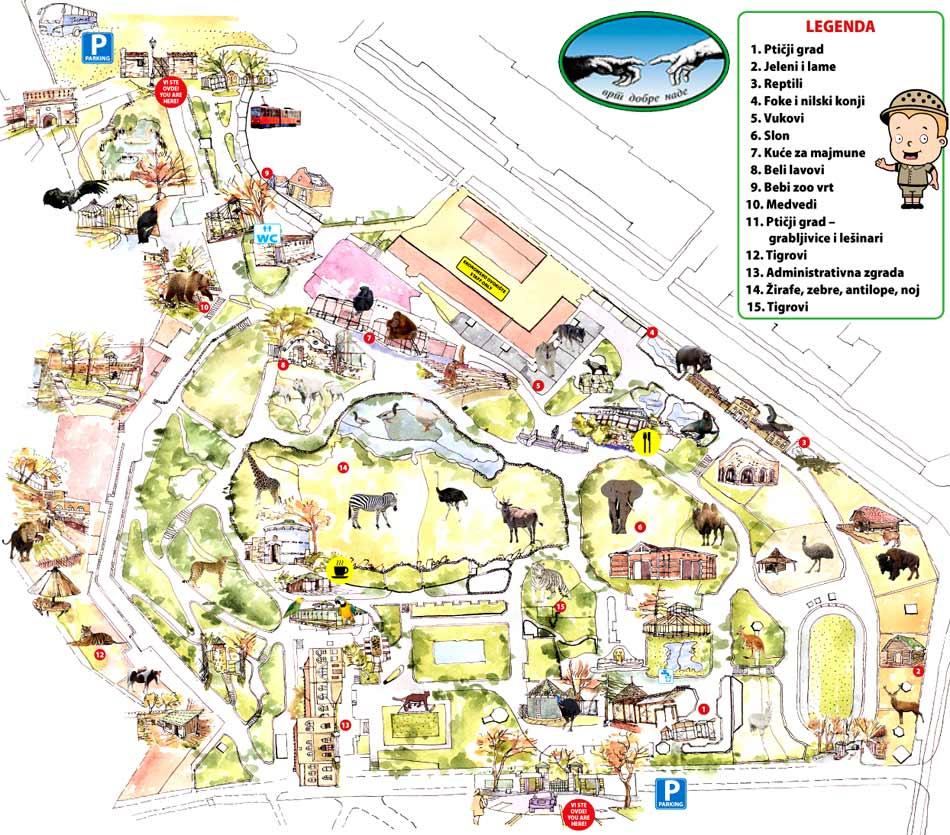 mapa beograda za mobilni Zoološki vrt grada Beograda – Beo Zoo Vrt mapa beograda za mobilni