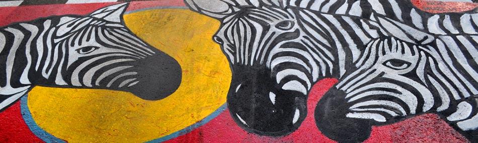 2015-05-13-Miloje-Mitrovic-zebra-f