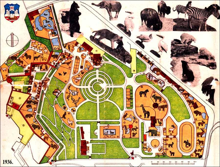 istorijat beogradskog zooloskog vrta