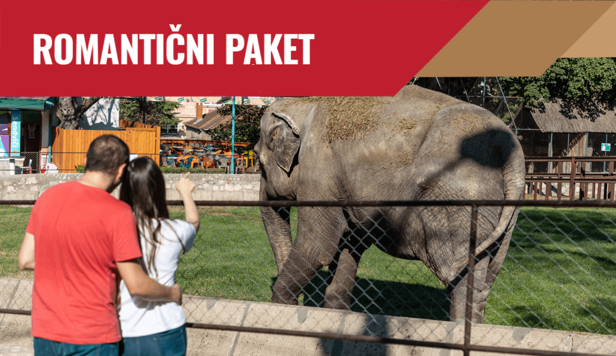 romantični paket beo zoo vrt